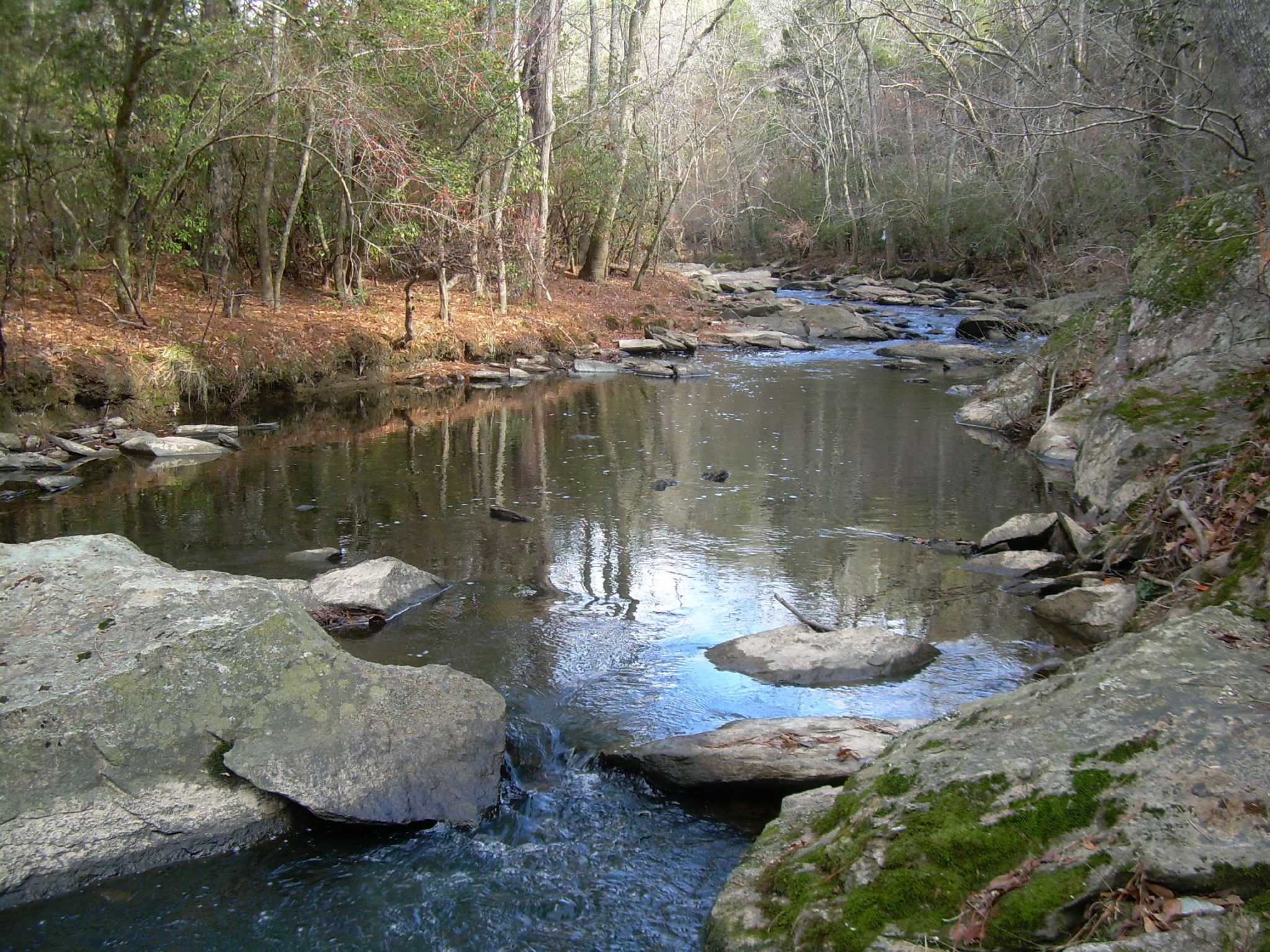 Denson's Creek