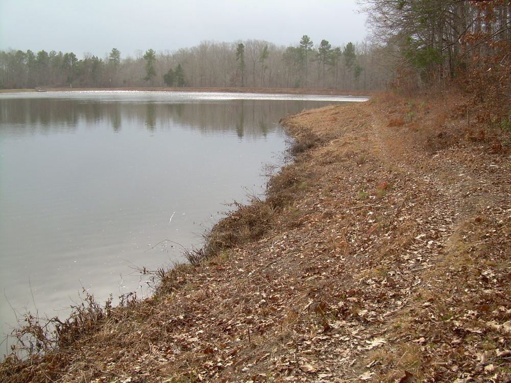 Roy J. Maness Nature Preserve lake