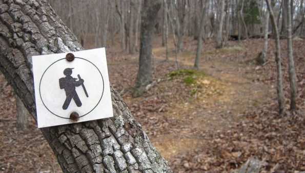 Trail marker in Morrow Mountain State Park