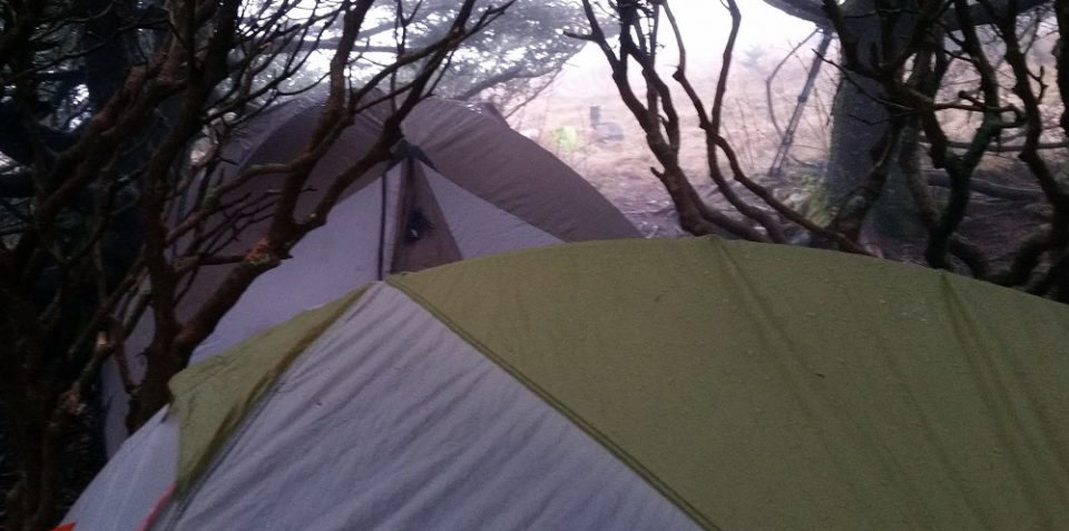 tent at Roan Mountain