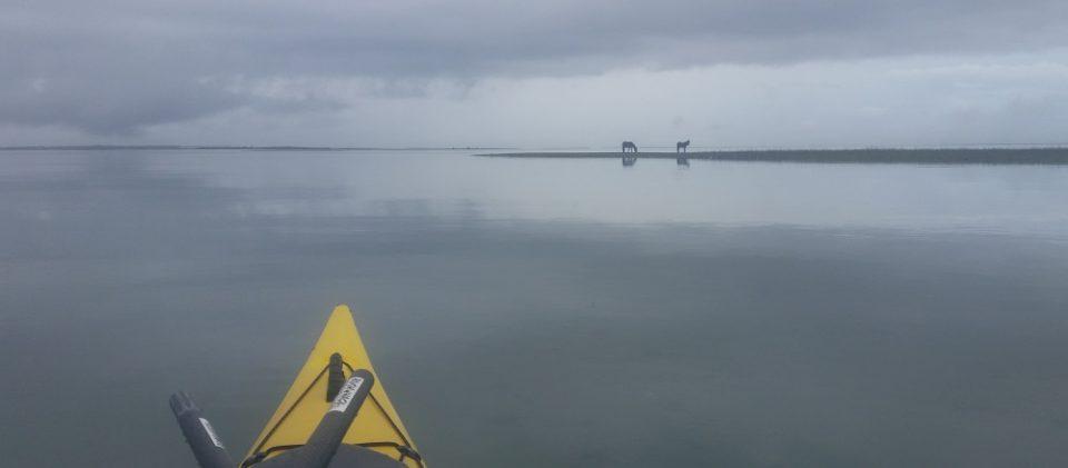 paddling a kayak